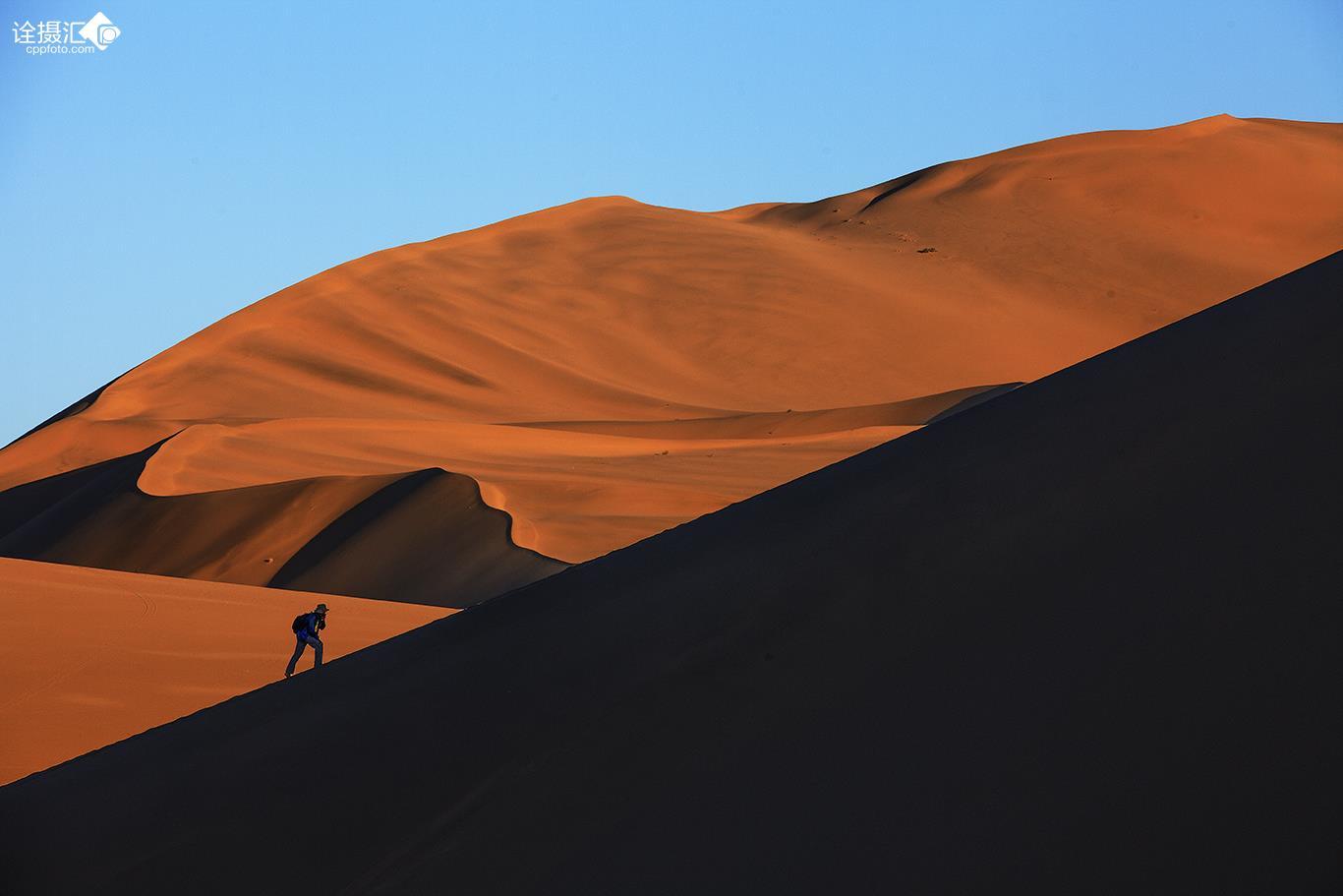 沙漠独行者