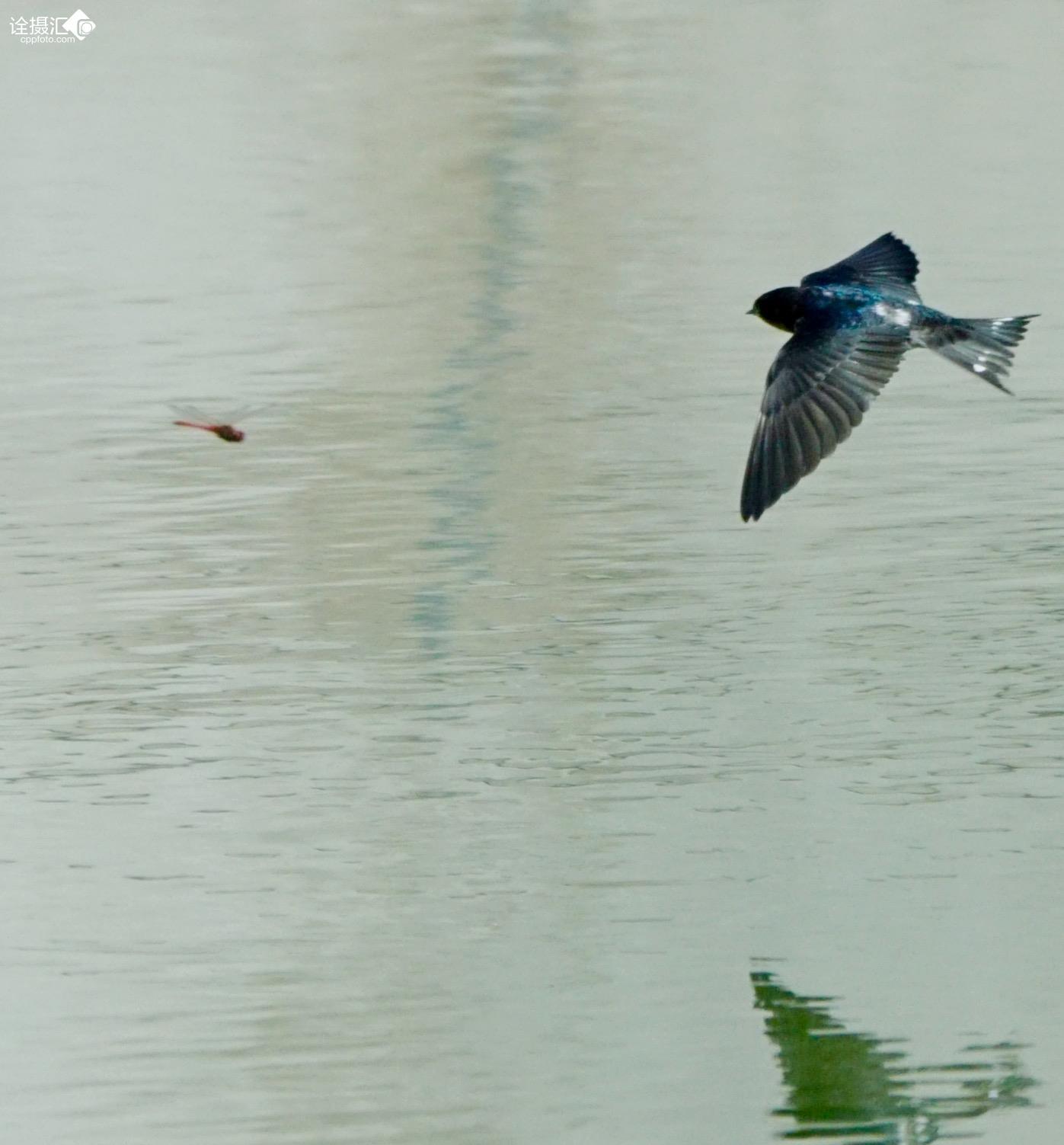 六安燕子湖自然风景区