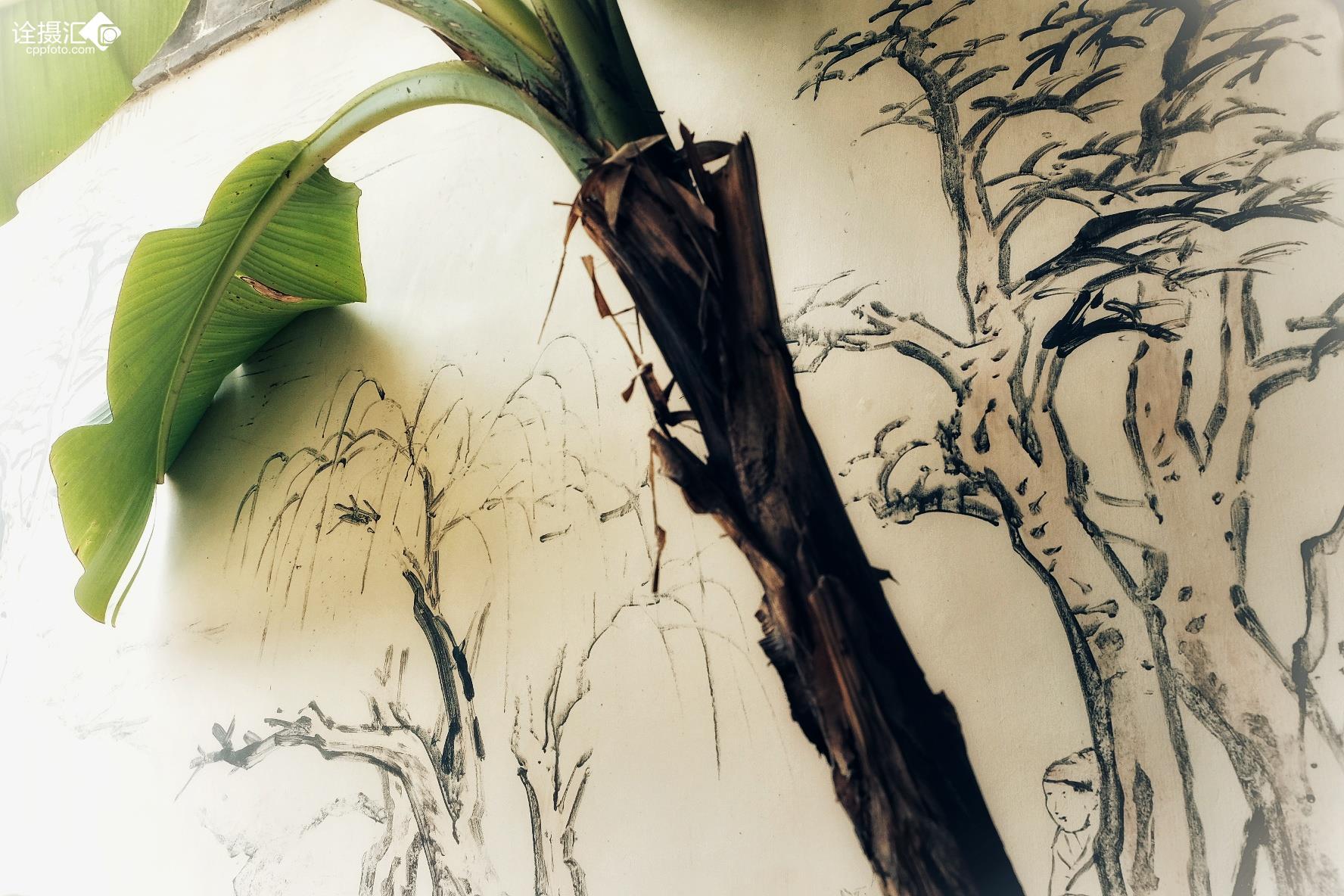 山水鸟蝴蝶风景图片