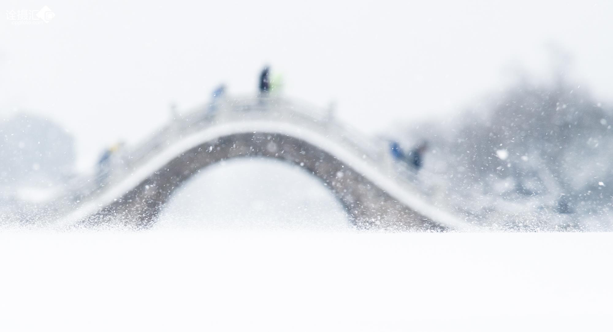 雪落江南桥更美