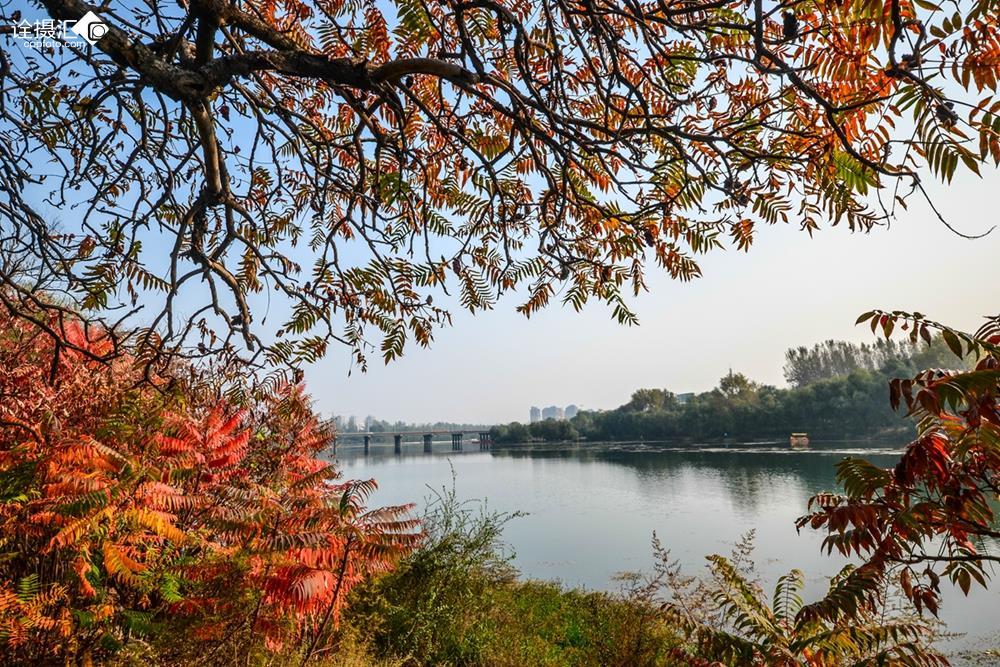 鹤壁淇河南岸规划图