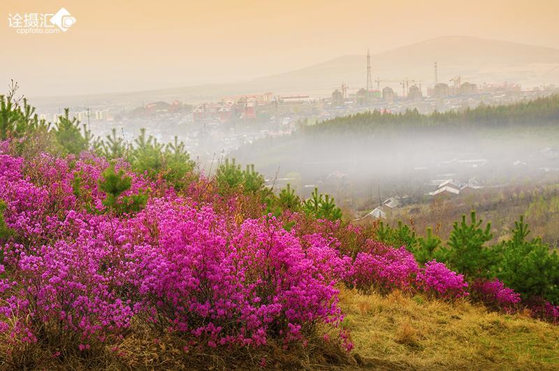 东北家乡风景图片